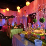 event-decor_scenery-012.jpg
